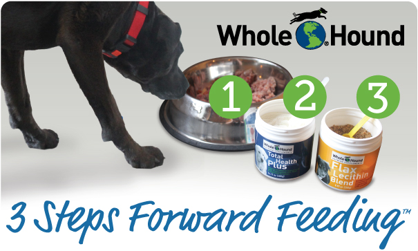 3steps_dog_food_supps_text